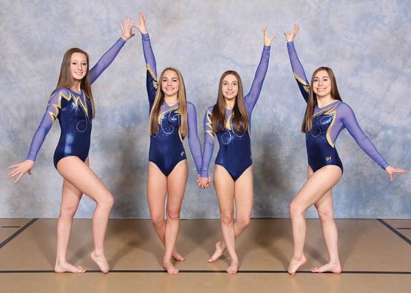 2016-2017 Gymnastics Team
