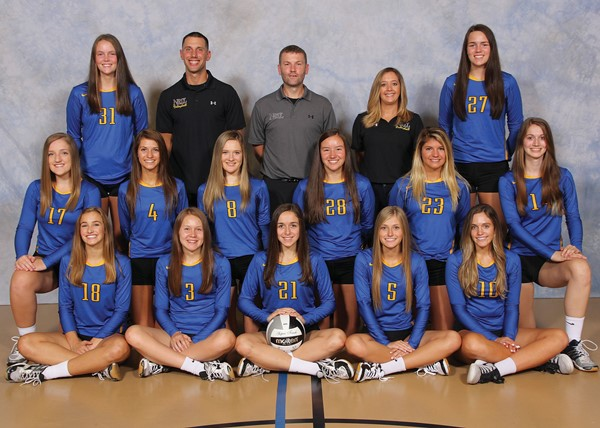2017 Varsity Volleyball Team Picture
